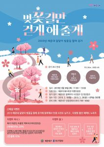 Dalmaji Cherry Blossom Trail Walking Festival @ Dalmaji Road