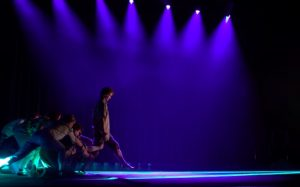 Australian Circus: BACKBONE @ Busan Citizens Hall