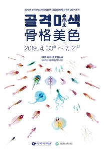 Busan Marine Natural History Museum Exchange Exhibition: The Inner Beauty of Fish @ Busan Marine Natural History Museum
